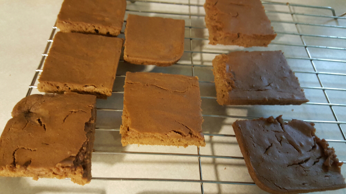 chocolate-peanut-butter-protein-bars