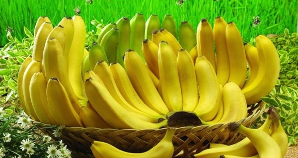 If You Are Banana Lover Read These 10 Shocking Facts (No.6 Is Very Important)