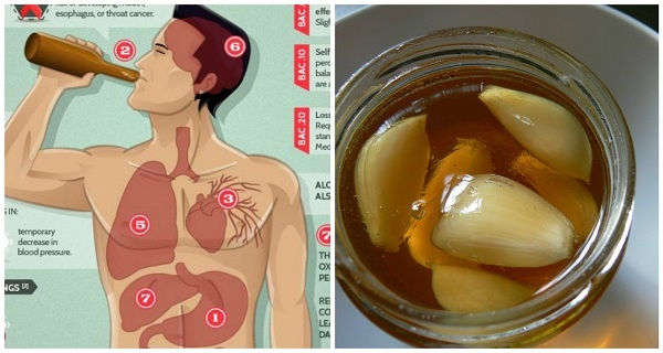If You Eat Garlic and Honey On an Empty Stomach For 7 Days, This Is What Happens To Your Body