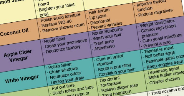 62 Uses For Simple Household Products To Save Money & Avoid Toxins