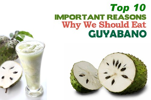 Top 10 Reasons Why You Need Guyabano in Your Diet