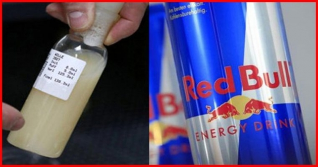 Did you know: Energy drinks such as Red Bull contain bull semen?