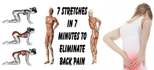 7 Stretches In 7 Minutes To Eliminate Back Pain