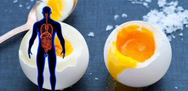 What Happens To Your Body If You Eat Eggs Every Day
