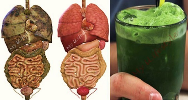 Super Green Detox Drink That Will Remove All Toxins And Fat From Your Body