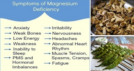 12 FOODS THAT INCREASE MAGNESIUM AND PREVENT HIGH BLOOD PRESSURE, BLOOD CLOTS, AND MUSCLE FATIGUE