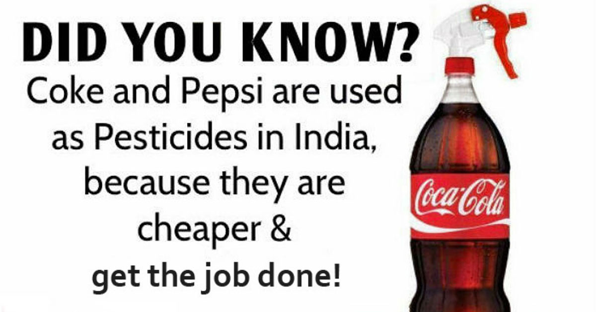 pepsi and coca cola used as pesticide in india because they re cheap and get the job done oh. Black Bedroom Furniture Sets. Home Design Ideas